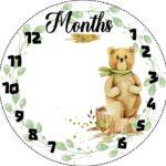 שמיכת צילום לתינוק , שמיכת תיעוד השנה הראשונה , שמיכת חודשים , שמיכה לתיעוד חודשי התינוק, שמיכת צילום לתינוקות