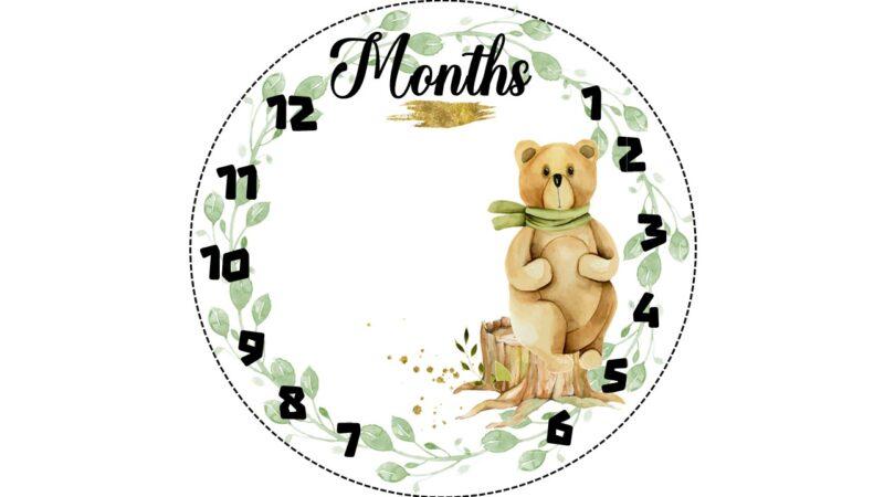 שמיכת צילום לתינוק , שמיכת תיעוד השנה הראשונה , שמיכת חודשים , שמיכה לתיעוד חודשי התינוק, שמיכת צילום לתינוקות , מתנה לתינוק , מתנה לתינוקת , מתנת לידה , מתנה ליולדת , תיעוד התינוק , מזכרת לתינוק , נחשוש , משטח החתלה , משטח פעילות , שמיכת תינוק , שמיכת צילום