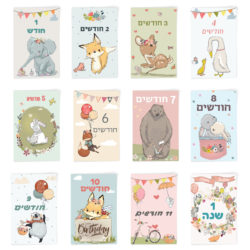 גלויות חודשים | תיעוד השנה הראשונה | תיעוד החודשים של התינוק | כרטיסיות חודשים | תיעוד התינוק | גלויות התפתחות | גלויות שנה ראשונה