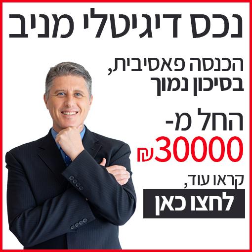 השקעה בנכס דיגיטלי מניב
